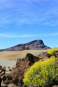 Parc National El Teide, Tenerife, Canary Islands