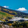 Aspen Fall color in mountain - Colorado, USA