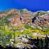 Colorful Aspen Mountain in a dazzling Autumn weather - Aspen,Colorado - USA