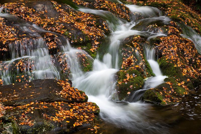 Fall Cascade