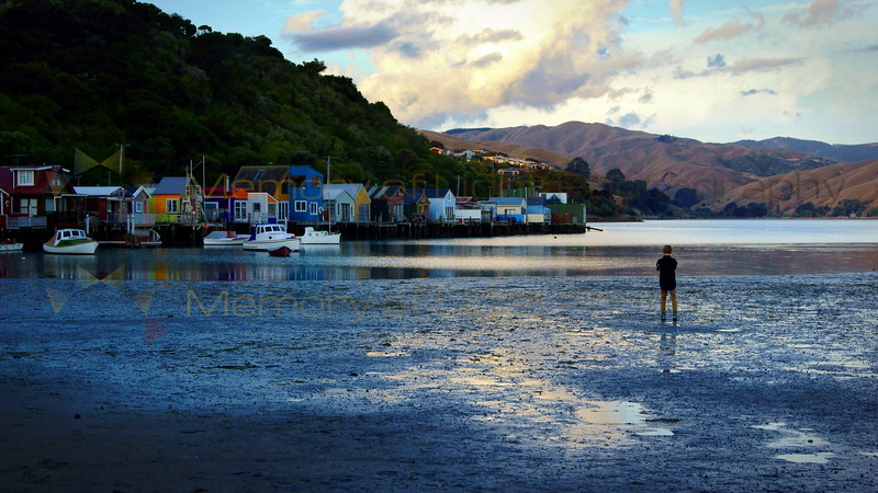 A boy photographer taking photos of colourful beach houses at Pauahatanui Inlet in New Zealand.