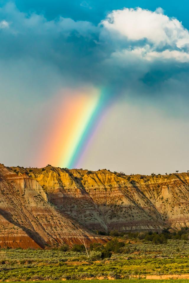 Grand Rainbow