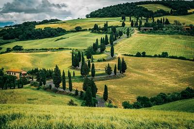 Zig Zag | Tuscany, Italy