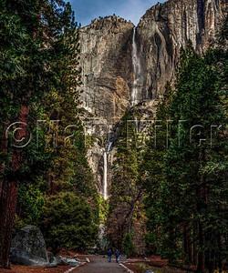 Pathway To Yosemite Falls