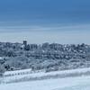 Cane Hill Snow