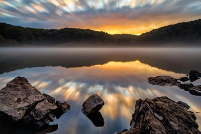 Lone Elk Sunrise