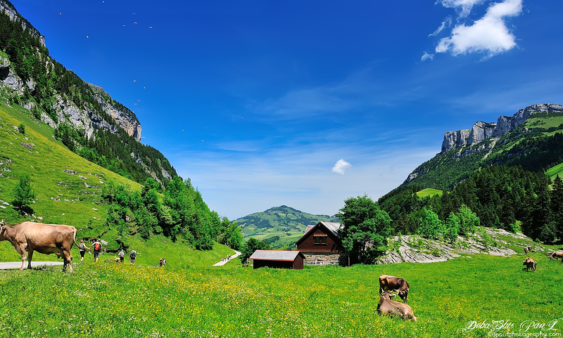 Ebenalp - Appenzell Alps, Switzerland