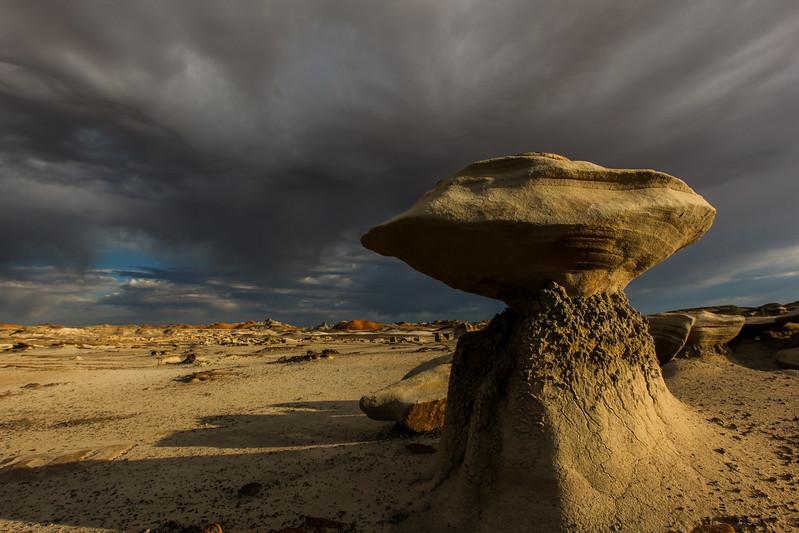 Bisti Wilderness, New Mexico