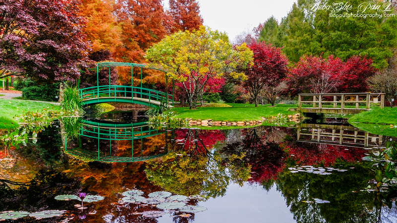 Picturesque Gibbs Gardens fall time - Georgia, USA