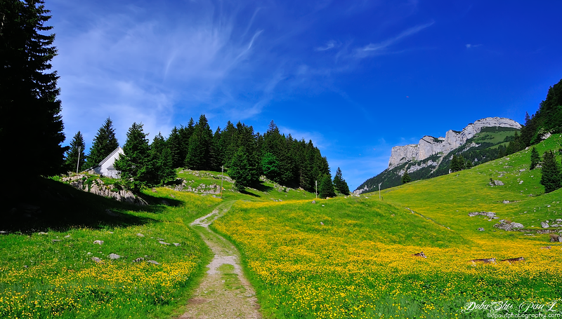 Ebenalp, the northernmost summit of the Appenzell Alps - Way to hiking route from Wasserauen to Seealpsee - Switzerland