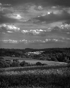 Crop Development [Mt. Airy, MD]