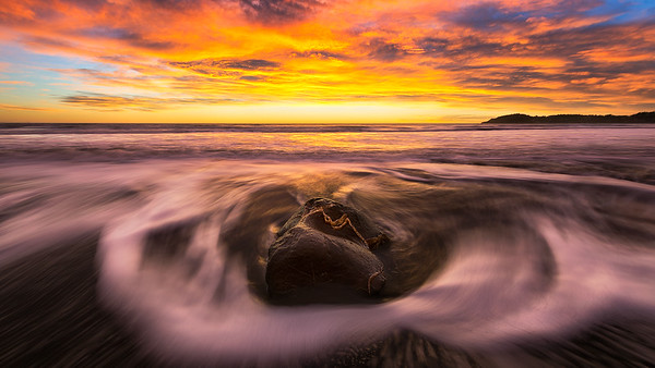 Moeraki Rush | New Zealand