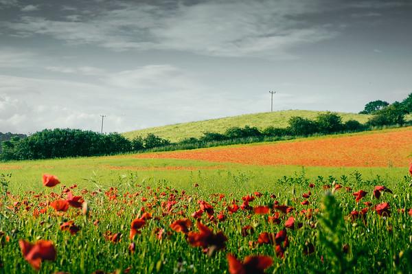 Taken in Bewdley
