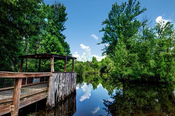 Glass Pond