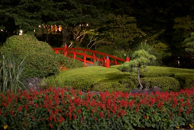 Japanese garden at The Hotel New Otani