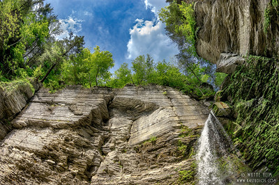 Looking Up at Watkins Glen   Photography by Wayne Heim