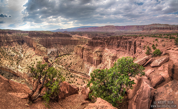 Bryce Canyon     Photography by Wayne Heim