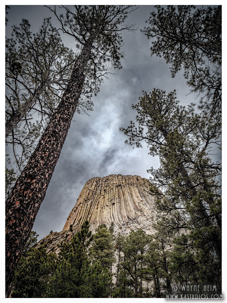 Devil's Tower   Photography by Wayne Heim