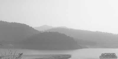 Misty Morning  Photography by Wayne Heim