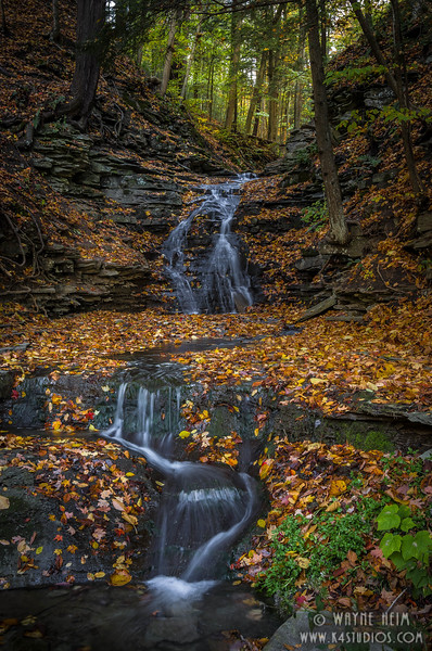 Little Stream    Photography by Wayne Heim