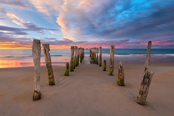 Soft Surrender || St Clair Beach New Zealand