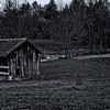 Shelter (Monochrome version)