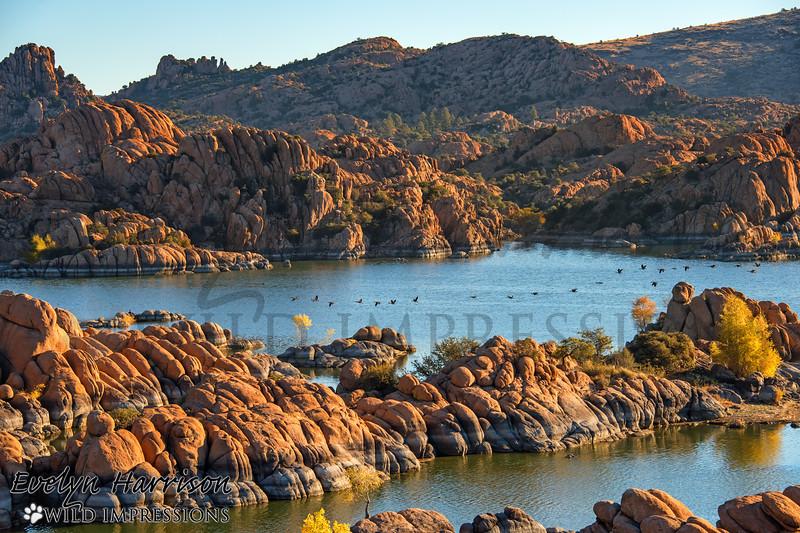 Watson Lake in Arizona