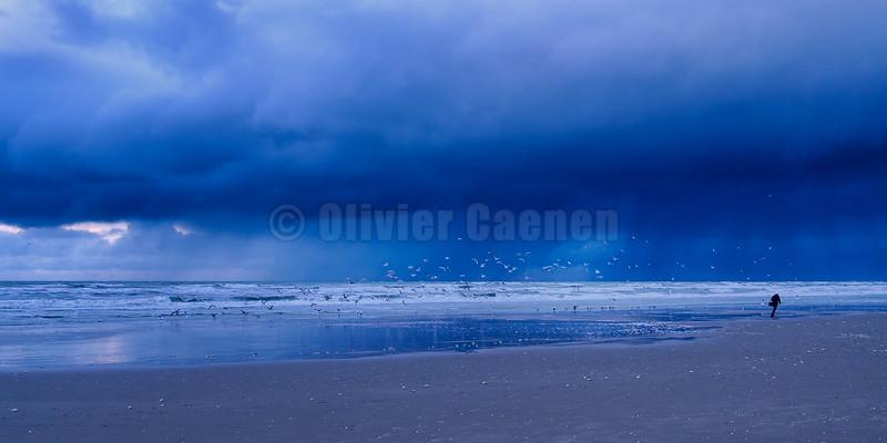 Tenpete d'Automne© 2016 Olivier Caenen, tous droits reserves