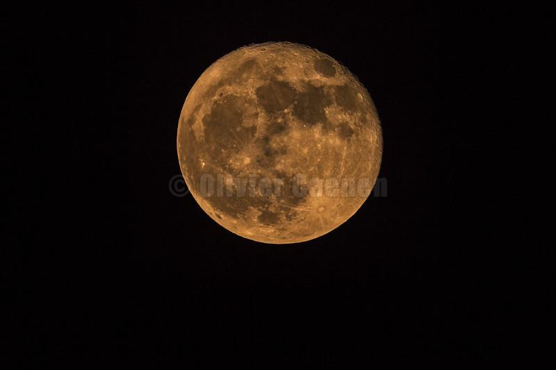 Full Moon © 2017 Olivier Caenen, tous droits reserves