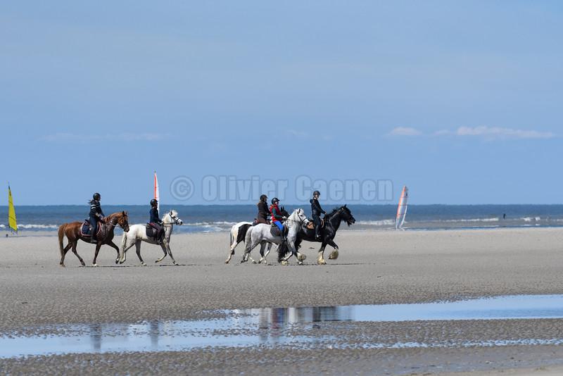Equitation sur la plage