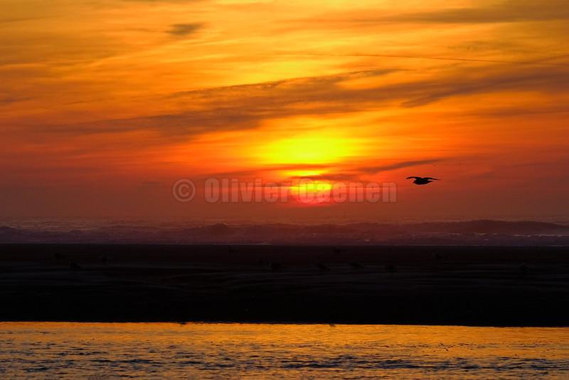 Winter Sunset © 2016 Olivier Caenen, tous droits reserves