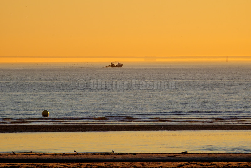 Les Pirates Sunset © Olivier Caenen, tous droits reserves