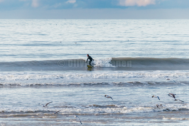 Surf de Noel © 2018 Olivier Caenen, tous droits reserves