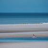 Surf au Touquet © 2017 Olivier Caenen, tous droits reserves