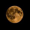 Pleine lune © 2016 Olivier Caenen, tous droits reserves