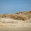 Dunes © 2016 Olivier Caenen, tous droits reserves