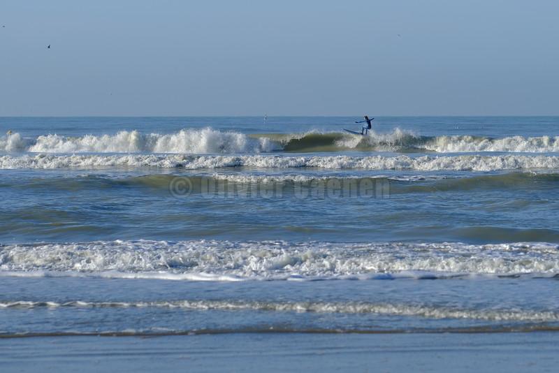 Surf session 27/12 © 2016 Olivier Caenen, tous droits reserves