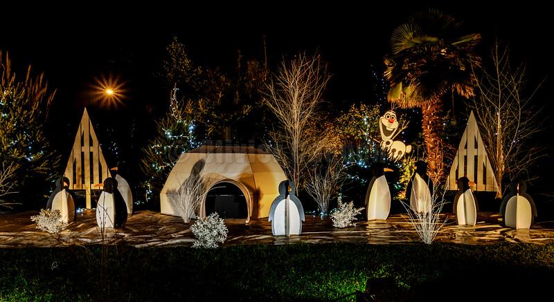 Christmas lights Etaples© 2016 Olivier Caenen, tous droits reserves