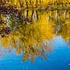 reflections in the st. croix river
