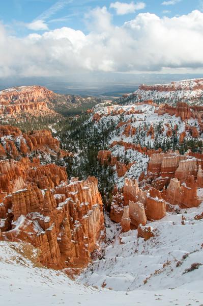 Red Sandstone and fresh snow, Bryce Canyon NP, Utah  November 2011