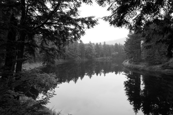 Moose River, at Oxbow Camp