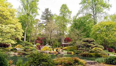Colorful springtime garden