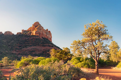 Path along the Sedona landscape