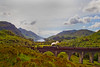 The Jacobite Train. Glenfinnan.