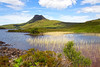 Stac Polly. Assynt. Sutherland. Accepted in the Local Newspaper.