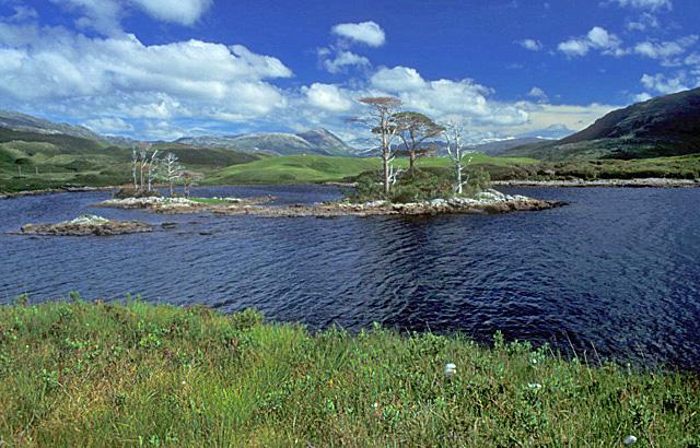 Loch Assynt John Chapman.