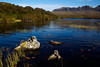 A Lochan at Assynt with the Mountain of Quinaig behind. Sutherland. Picture in the Local Newspaper.