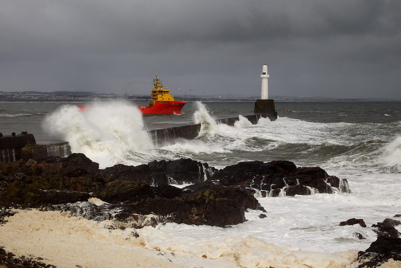 Taken just outside Aberdeen Harbour. Picture in the Local Newspaper.