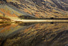 Reflections at Glencoe. Accepted in the local press.