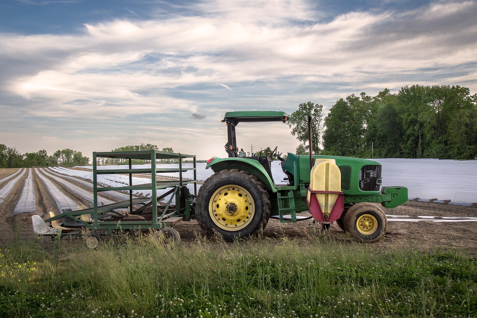 A Farm in Pennsville, NJ